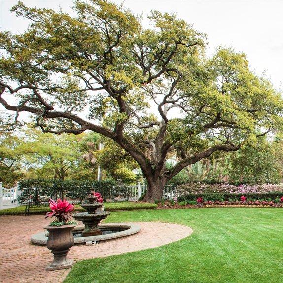Charleston Landscaping