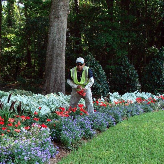Summerville Landscaping