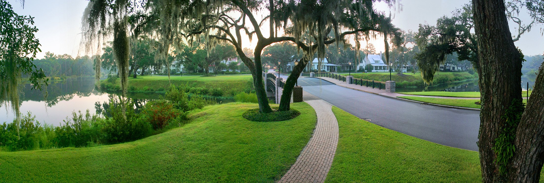 Palmetto Bluff Header